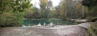 Ichetucknee Springs SP north springs pano02